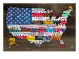 Fifty State Flag - Aaron Foster