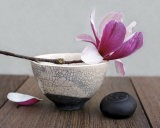 Magnolia and Bowl - Amelie Vuillon