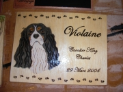 bois marqueterie animaux chien cavalier king charle pattes bois : PYROGRAVURE CAVALIER KING CHARLES