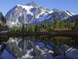Mt. Shuksan in the Fall with Red Blueberry Bushes, North Cascades National Park, Washington, USA - Charles Sleicher