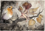dessin animaux fee rougegorge amourencage physalis : Physalis