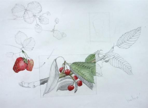 Dessin cerise sur le gateau crayons de couleur - Dessin nature morte ...