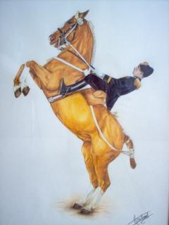 Dessin cheval cabr cavalier realisme cheval la courbette - Cheval dessin couleur ...