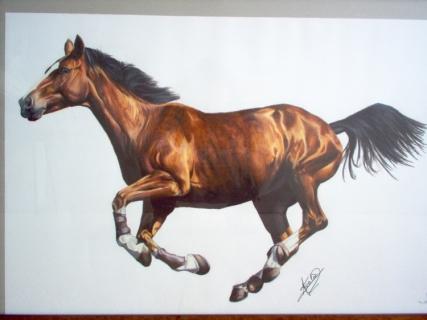 Dessin cheval au galop - Image cheval dessin ...