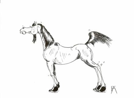 Dessin cheval humour encre humour fiert - Cheval rigolo ...