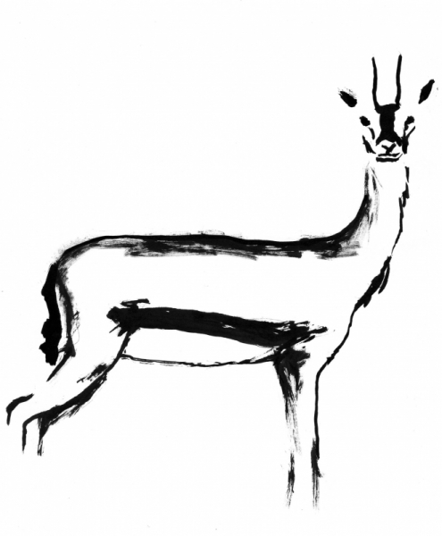 Dessin gazelle sauvage afrique savane gazelle i - Savane dessin ...