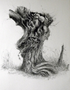 dessin paysages bocage arbre encre rotring : Charme t�tard,III