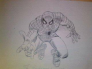 dessin personnages spiderman : Spiderman