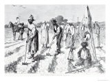 """Cotton Culture, Covering the Seed, from """"Harper's Weekly,"""" 24th April 1875 - Edwin Austin Abbey"""