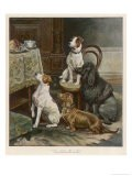 Four Dogs Lust after Their Owners' Food - Fanny Moody