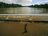 Flood Waters Rise to Meet a Bridge on the Victoria River