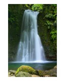 Waterfall. Azores islands. - Gaspar Avila