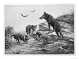 Feral Child Quarrelling with Wolf Cubs Over Food 5 of 5 - Harry B. Neilson
