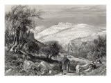 The Mount of Olives, from Mount Zion, engraved by S. Bradshaw - Harry Fenn