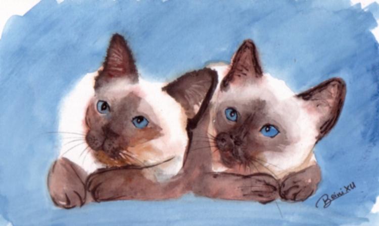 Super TABLEAU PEINTURE chat, Chaton siamois aquarelle animaux - Deux  KH43
