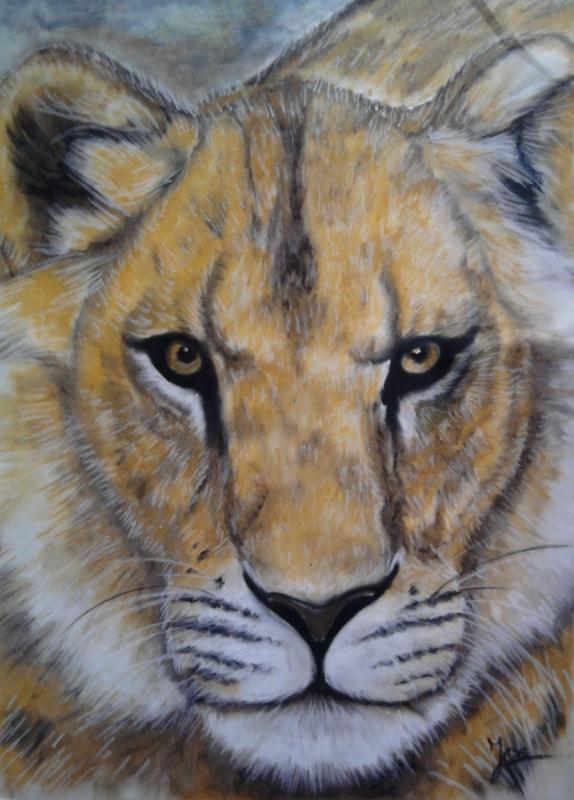 Dessin dessin lionne dessin animaux dessin fauves dessin - Lionne dessin ...