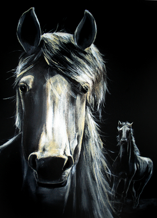 tableau peinture art cheval portrait animal blanc animaux acrylique cheval blanc. Black Bedroom Furniture Sets. Home Design Ideas