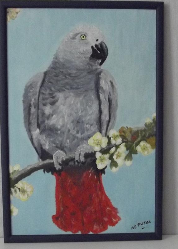 tableau peinture art perroquet cacatoes gris bleu peinture a l 39 huile perroquet. Black Bedroom Furniture Sets. Home Design Ideas