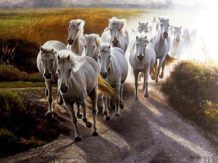 Tableau peinture animaux chevaux cheval camargue chevaux sauvages - Tableau de cheval ...