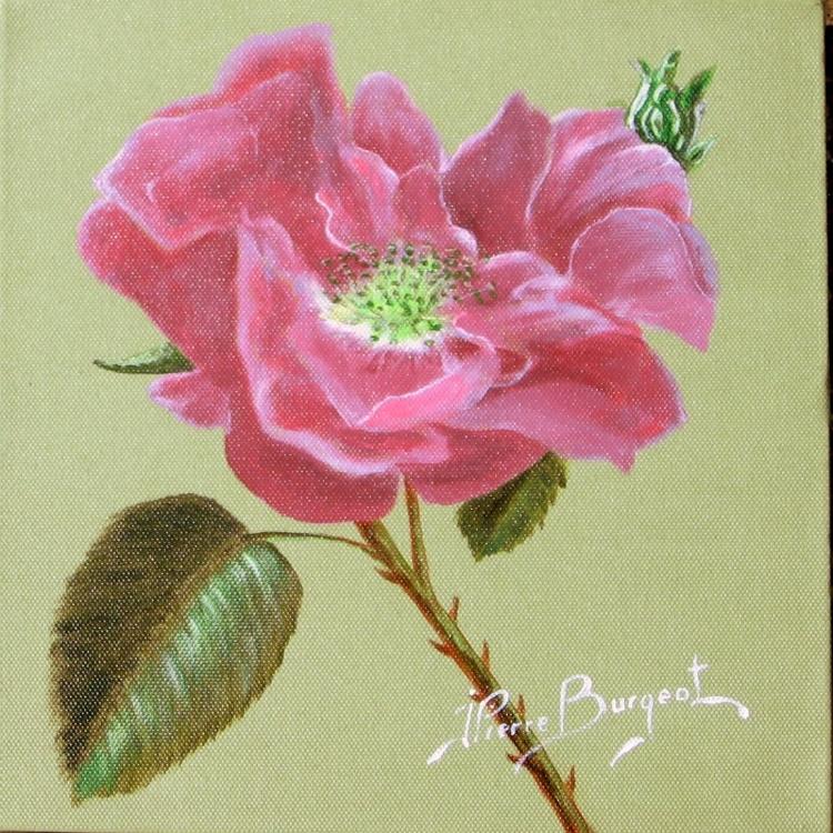 Tableau peinture art fleur rose fleurs acrylique rose for Peindre une baignoire en acrylique