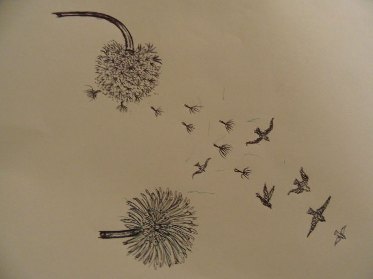 tableau peinture art fleur oiseaux graines tattoo paysages gravure l 39 envol. Black Bedroom Furniture Sets. Home Design Ideas