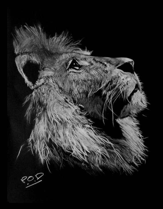 Préférence TABLEAU PEINTURE tableau de lion pastel sec déco design  UJ48