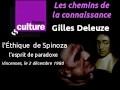L'Éthique de Spinoza 3 - l'esprit de paradoxe