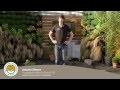 Comment créer et mettre en place un jardin zen?