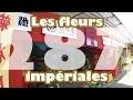 Les fleurs impériales (vlog Japon #287)