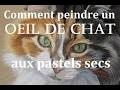 Comment peindre un oeil de chat ? [Pastels]