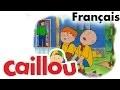 Caillou FRANÇAIS - Un nouveau membre dans la famille (S02E14) | conte pour enfant