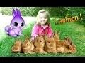[VLOG] Petit moment de détente dans la nature avec un lapin nain.
