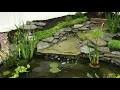 Création bassin de jardin en bac préformé, avec cascades