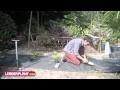 Comment planter une haie de cyprès avec une toile de paillage ?