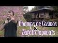Visitons des CHAMPS DE COSMOS et UN JARDIN JAPONAIS !!