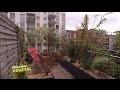 Aménagement terrasse : installer un brise vue pour balcon - Mission Végétal - M6