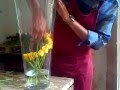 florist -  new decoration of glass vases