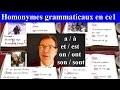 Français orthographe : 4 homonymes grammaticaux ce1