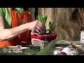 Comment fabriquer un centre de table pour Noël avec des jacinthes, du houx, du cornouiller, du pin