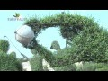 L'art topiaire : comment sculpter les végétaux - Jardinerie Truffaut TV