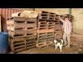 Comment construire une maison / chalet en palettes - Partie 001