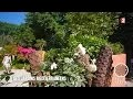 Jardin - Secret de jardin méditerranéen - 2015/07/22