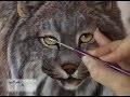 Les Carnets Sauvages, série documentaire de Gisèle Benoit, peintre animalier et naturaliste