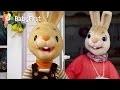 Amusement en famille - Compilation Henri Le lapin | Apprendre l'anglais pour les enfants | BabyFirst