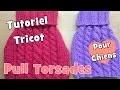 Tutoriel Tricot: Comment tricoter un pull à torsades pour chiens?