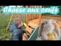 CHASSE AUX OEUFS DE PAQUES - EDEN KID