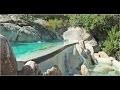 Construire un Etang de Baignade Paysagé : Piscine Naturelle