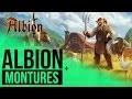 Albion Online - Comment avoir une monture ? [FR]