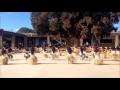 Vaiana - La plus belle danse