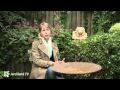 Bassins et fontaines de jardin - Jardiland TV - le grand jardin n°4 - 4